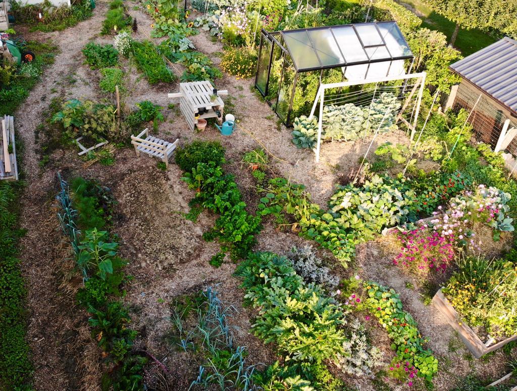 Stage à Limal : Formation au potager en permaculture