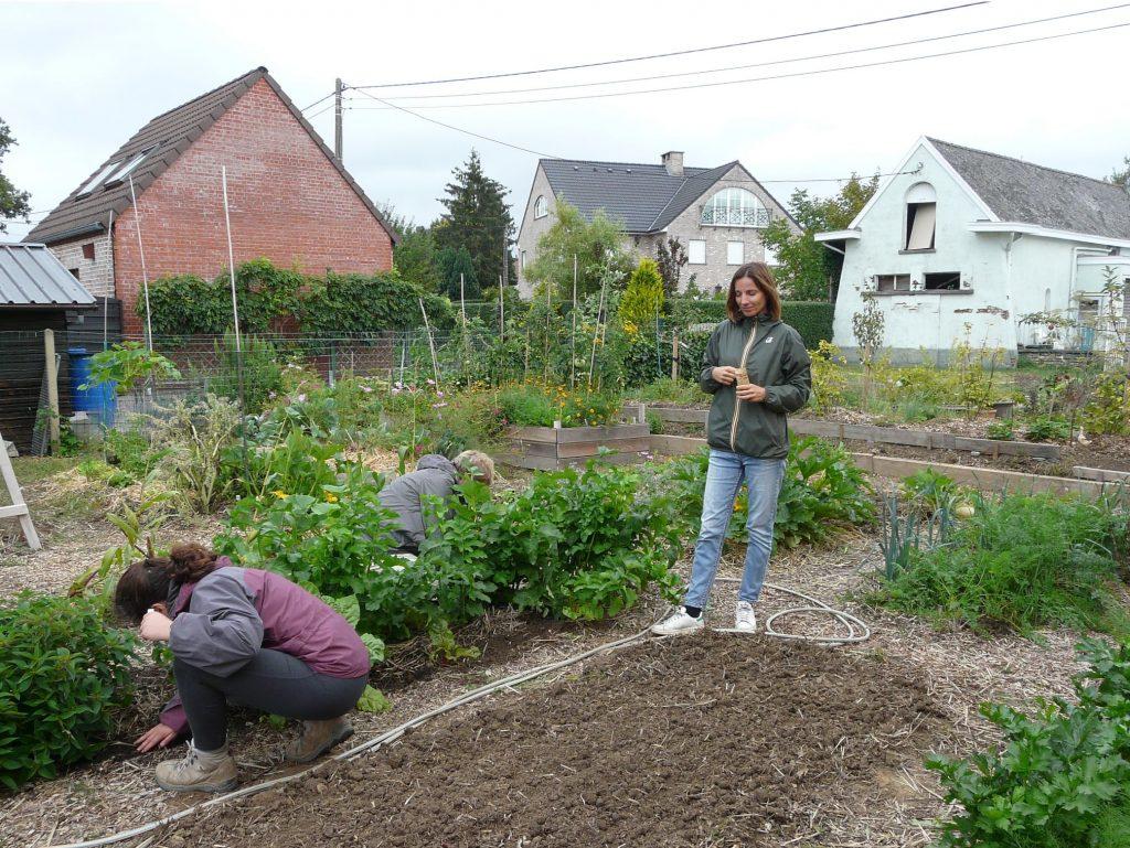 Stage à Ophain : Formation au potager en permaculture